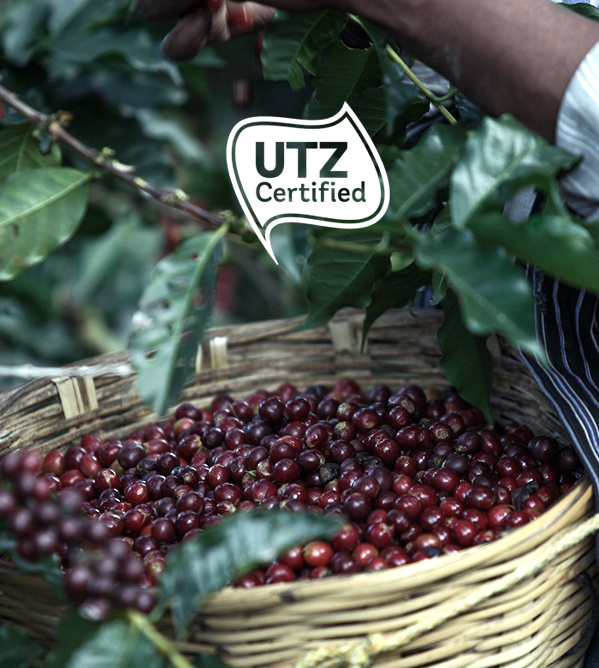 utz-certificate